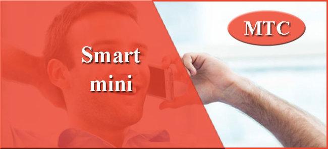 «Smart Mini»
